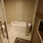 Glass Shower & Soaker Tub
